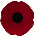 Brechin Remembrance Day Ceremony November 8, 2018