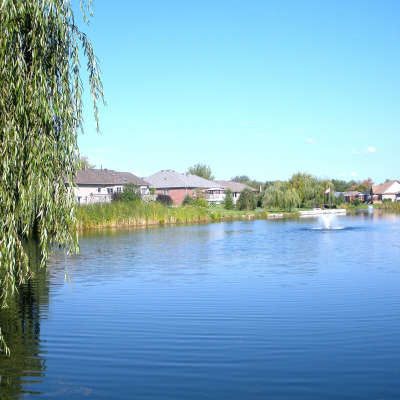 Herbicide Spraying of Harbours and Ponds