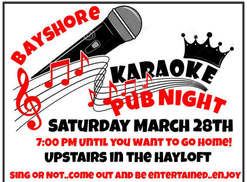 Karaoke Pub Night